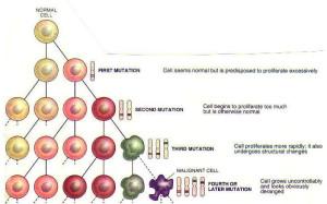 cell mutation